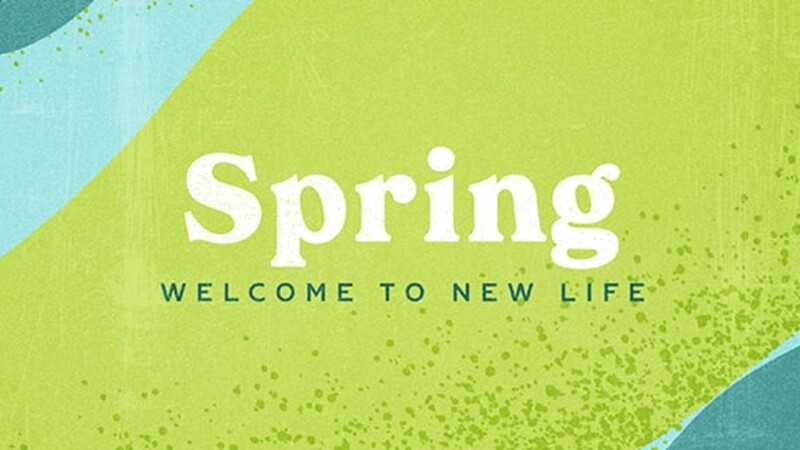 Spring – New Life